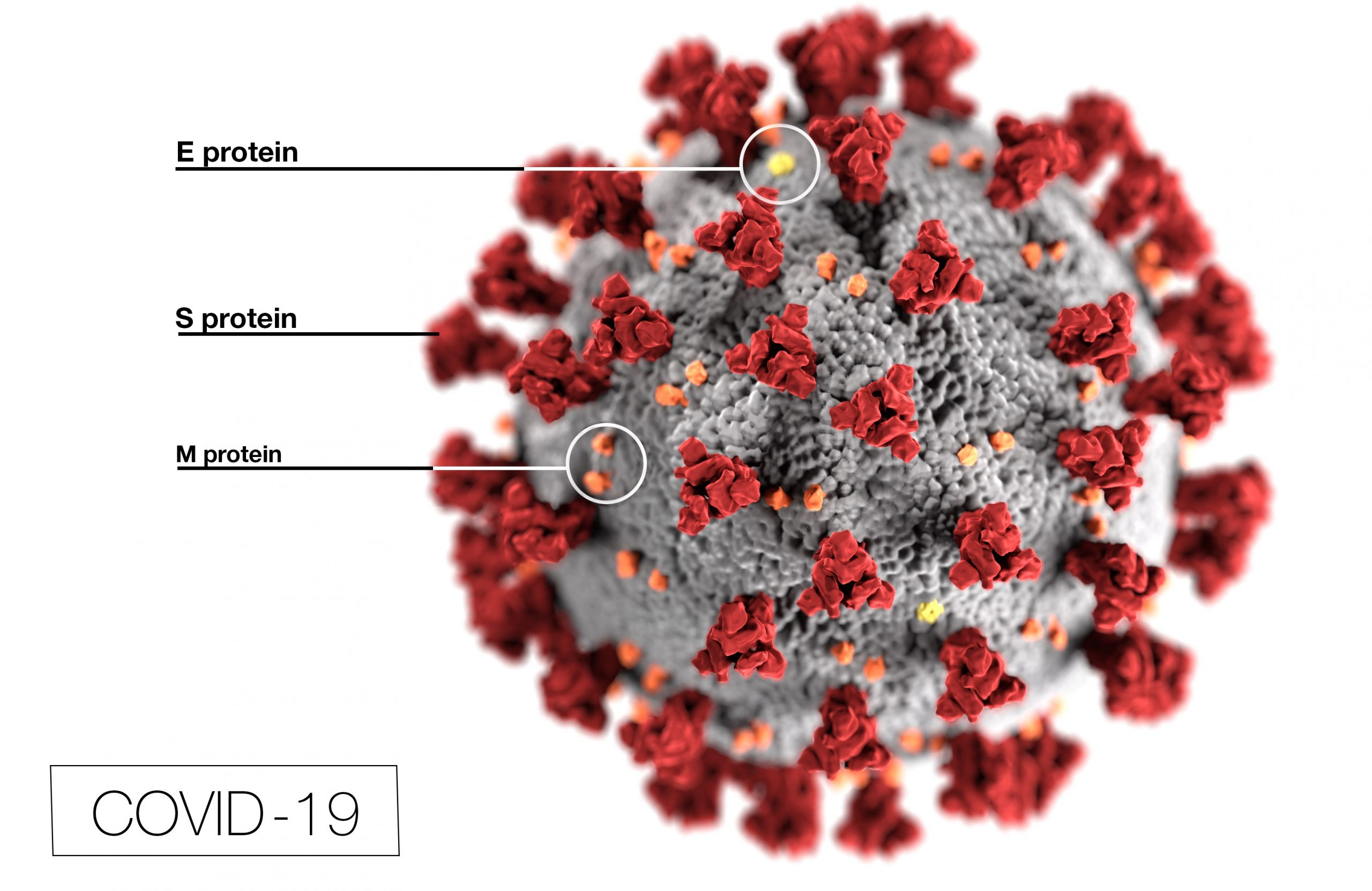Can a Person Be Charged With Criminal Coronavirus Transmission?